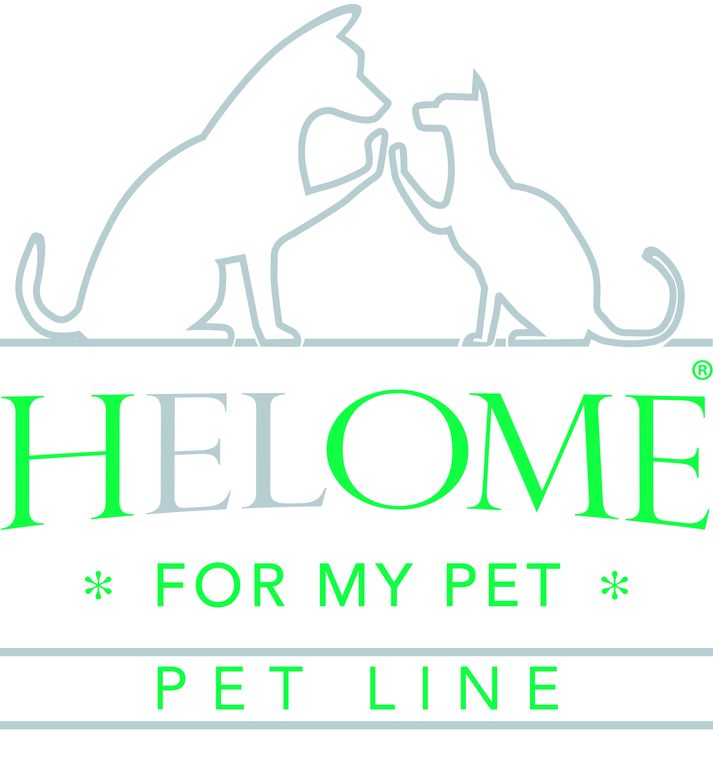 HELOME-Logo-4c-PETgruen